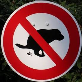 No dogs pooping sign