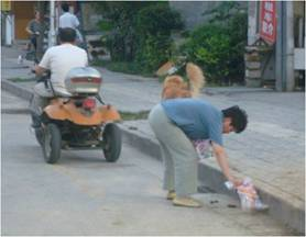 Dog clean up in China